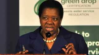 Water Affairs Minister Buyelwa sonjica. Picture: Masi Losi