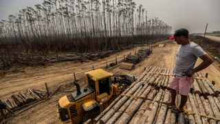 Amazon deforestation hits highest level in 5 years