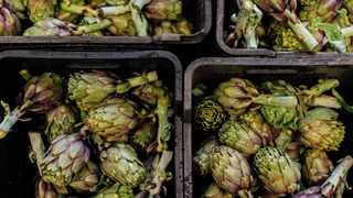 Artichokes will be turned into a range of delicious dishes at Ayama farm in the Paardeberg. Picture: Supplied