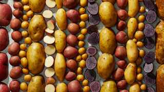 Everything you need to know about potatoes. Picture: Tom McCorkle/The Washington Post