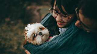 Give your dogs treats for always being there for you. Picture: Helena Lopes from Pexels