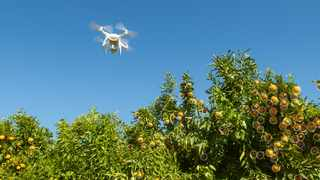 Aerobotics is a subscription-based artificial  intelligence company that provides intelligent tools for the agricultural industry to manage its crops.