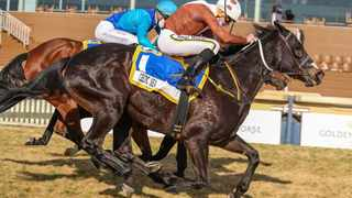 Gavin Lerena gets favourite Celtic Sea up in the shadow of the post to win the Grade 1 SA Fillies Sprint at Hollywoodbets Scottsville on Saturday. It was back-to-back victories for Sean Tarry's filly.