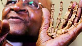 Desmond Tutu, who turns 80 next month, was presented with a model of Australopithecus sedibas hand yesterday, and he responded with a chuckle: From one fossil to another. He added: We always said we are all Africans. Heres proof of it& it is quite amazing.  Photo: Brenton Geach
