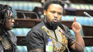 BLF leader Andile Mngxitama.