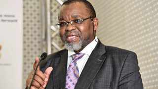 Gwede Mantashe says he wants journalists to see the security upgrades at his homes before he gives evidence at the state capture commission of inquiry. Picture: GCIS