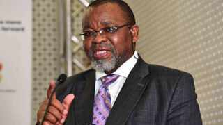The Minister of Mineral Resources, Mr Gwede Mantashe. File photo: GCIS.