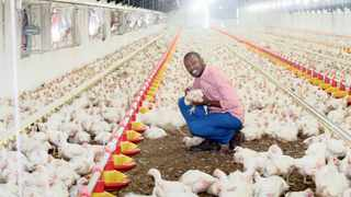 TUMI Mokwene in his broiler house near Lanseria airport. Astral Foods said yesterday that it had signed an emergency agreement with Standerton Municipality as an interim measure.
