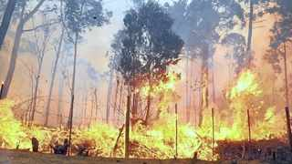 Climate change/rising temperatures are expected to fan the flames this fire season. Picture: Phando Jikelo/African News Agency (ANA)
