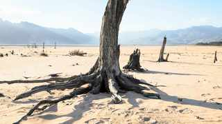 Parts of Theewaterskloof Dam, one of the Western Cape's key water sources, stand completely dry in the midst of the worst drought in a century. Picture: Joan Word