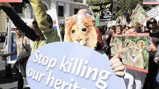 About 80 people marched against canned lion hunting and the euthanasia of Sylvester the lion which escaped for the second time from a sanctuary near Beaufort West. File picture: Michael Walker/Independent Media