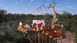 Chalkley Treehouse, Lion Sands Game Reserve. Picture: Instagram