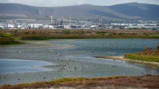 The ReThinkTheStink campaign says the Milnerton Lagoon was turning toxic after a massive sewage smell reportedly started coming down towards the lagoon mouth last weekend and the water started turning a milky white grey colour with the odour increasingly becoming pungent. Picture: Armand Hough/African News Agency(ANA)