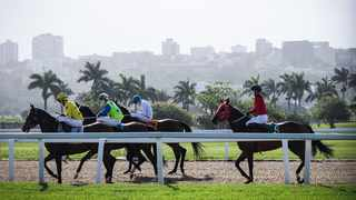 FILE: Horses warm up at the Greyville race course ahead of the race challenge in Durban.Photo: Motshwari Mofokeng /African News Agency (ANA)