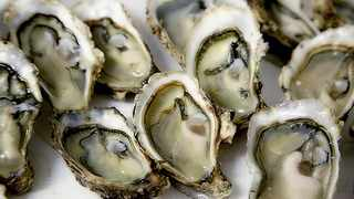 Oysters contain more zinc per serving than any other food. Picture: Photo-graphe/Pixabay.