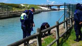 The City of Cape Town's law enforcement auxiliary officers came to the rescue of a drowning man at the Muizenberg/ Zandvlei estuary on Saturday. Picture: Supplied