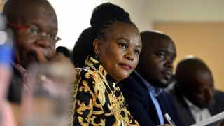 Advovate Busisiwe Mkhwebane briefs the media on findings from hear various investigations. Picture: Oupa Mokoena/African News Agency (ANA)