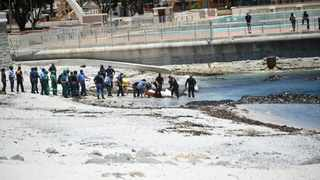 An unidentified women's body was found in the surfline in front of the Sea Point swimming pool on Sunday morning. Picture Leon Knipe/African News Agency(ANA)