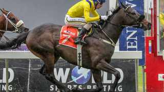 Vodacom Durban July third favourite Vardy was soundly beaten by his stable companion Twist Of Fate in their official Vodacom Durban July gallop on the Summerveld bottom grass track last Thursday. Photo: supplied