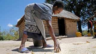 Approximately 90% of Zambia's rural population depends on rain-fed agriculture for a living. Picture: Supplied by UN
