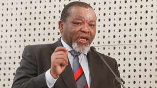 Minister of Mineral Resources and Energy and ANC chairperson Gwede Mantashe File picture: Jacques Naude/African News Agency(ANA)