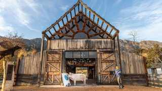 Farm Sanctuary, located in the Franschhoek Valley, is here where travellers go for a bit of solitude and meet a painting pig called Pigcasso.