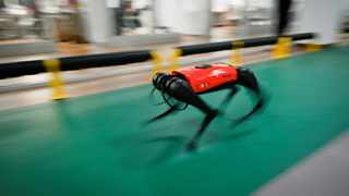 AlphaDog quadruped robot running in a workshop at the Weilan Intelligent Technology Corporation in Nanjing, China's Jiangsu province. Picture: Wang Zhao / AFP