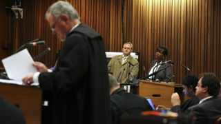 Police photographer Bennie van Staden testifies as Barry Roux, lawyer forOscar Pistorius, goes through his notes during the trial for the murder of Reeva Steenkamp. Picture: SIPHIWE SIBEKO