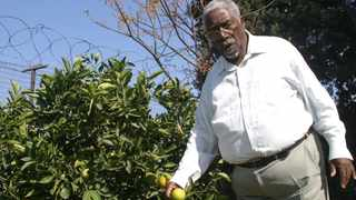 Dr Frank Mdlalose is seen at his Emoyeni Farm, near Madadeni. Picture: Enos Mhlongo/African News Agency (ANA) Archives