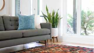 A rug is a quick way to warm up a room or pull the space together. Picture: Ryan Christodoulou