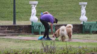 A man walks his dogs in Jameson Park this week. The eThekwini Municipality has said it will no longer allow dogs in the park. Picture: Doctor Ngcobo African News Agency (ANA)
