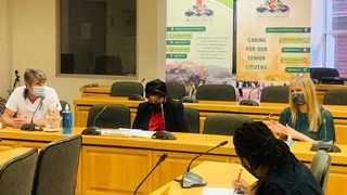 District mayor Thobekile Maphumulo in a meeting with stakeholders this week. Picture: Facebook