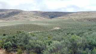 An iImage of the Eastern Cape farm, where Die Eden Projek wants to create a whites-only settlement.