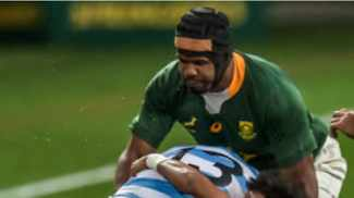 Tyger kings: Tygerberg duo to lock up for the Boks in Oz