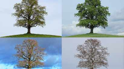 Are the seasons changing? Can we expect longer summers and shorter winters?