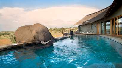 South Africa's best hotel pools with a view