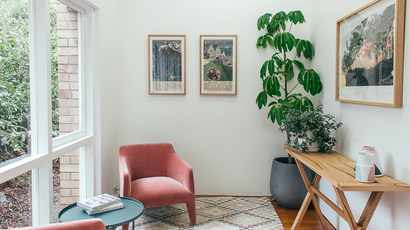 Plants at home may up positive mental well-being