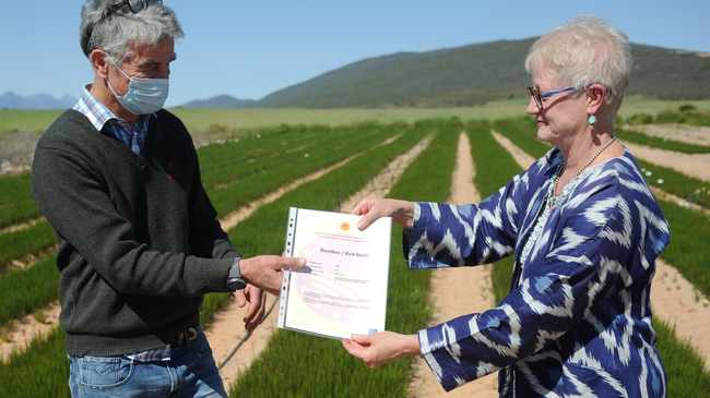 Rooibos Limited Managing Director Martin Bergh (left) receives the EU Certificate from EU Ambassador to South Africa, Riina Kionka on Yzerfontein Guest farm near Clanwilliam. Picture: Henk Kruger/African News Agency(ANA)