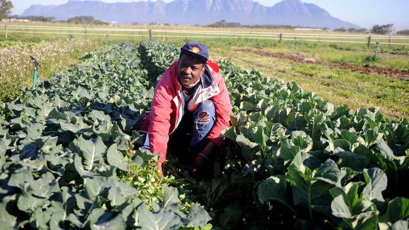 Land reform is more urgent than ever before, Newsline