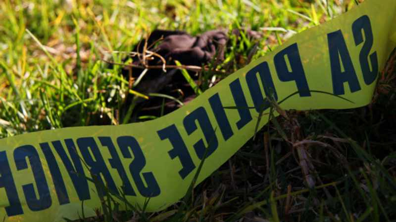 Durban cops search for relatives after skeletal remains found in Rippon Road bush, Newsline