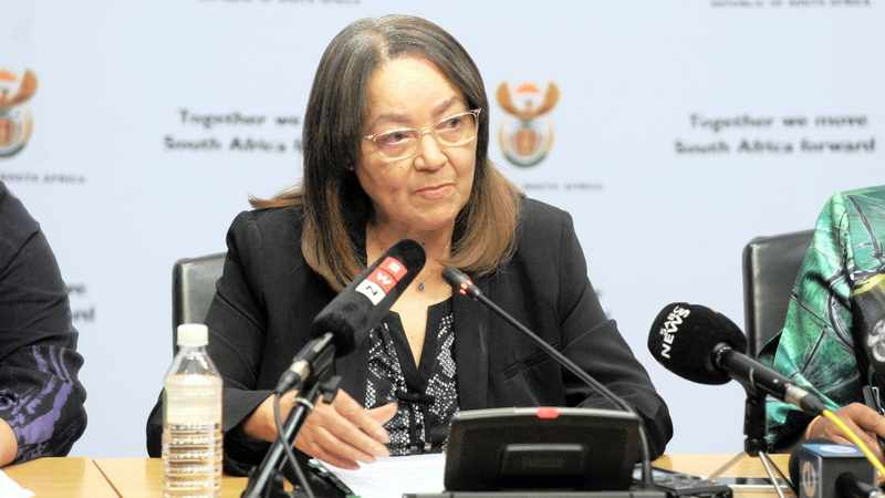 84588dee fec6 5c6d 9bca 088bb0cff626 - Parliament watchdog demands Treasury tackle De Lille's role in Beitbridge fence fiasco