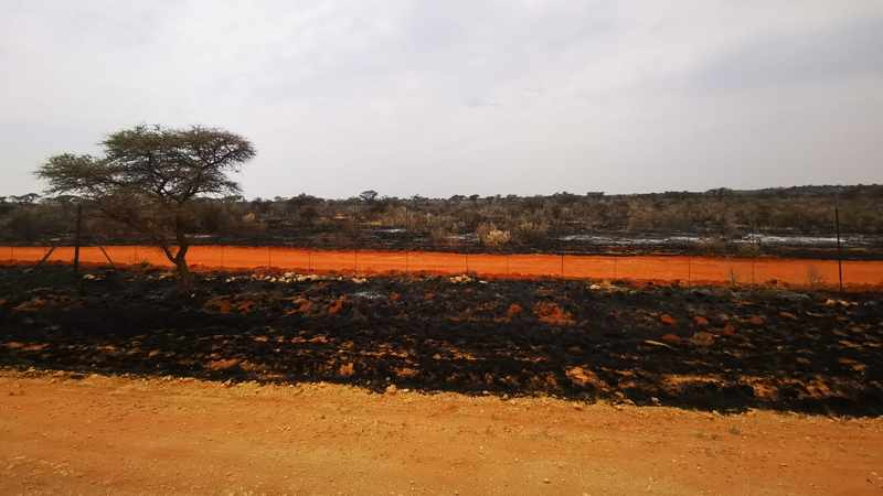 Fires ravage more than 100 000 ha of grazing land in Northern Cape, Newsline