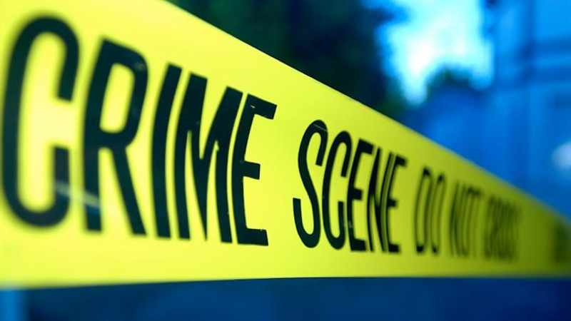 KZN woman, 84, fights for life after husband fends off attacker, Newsline