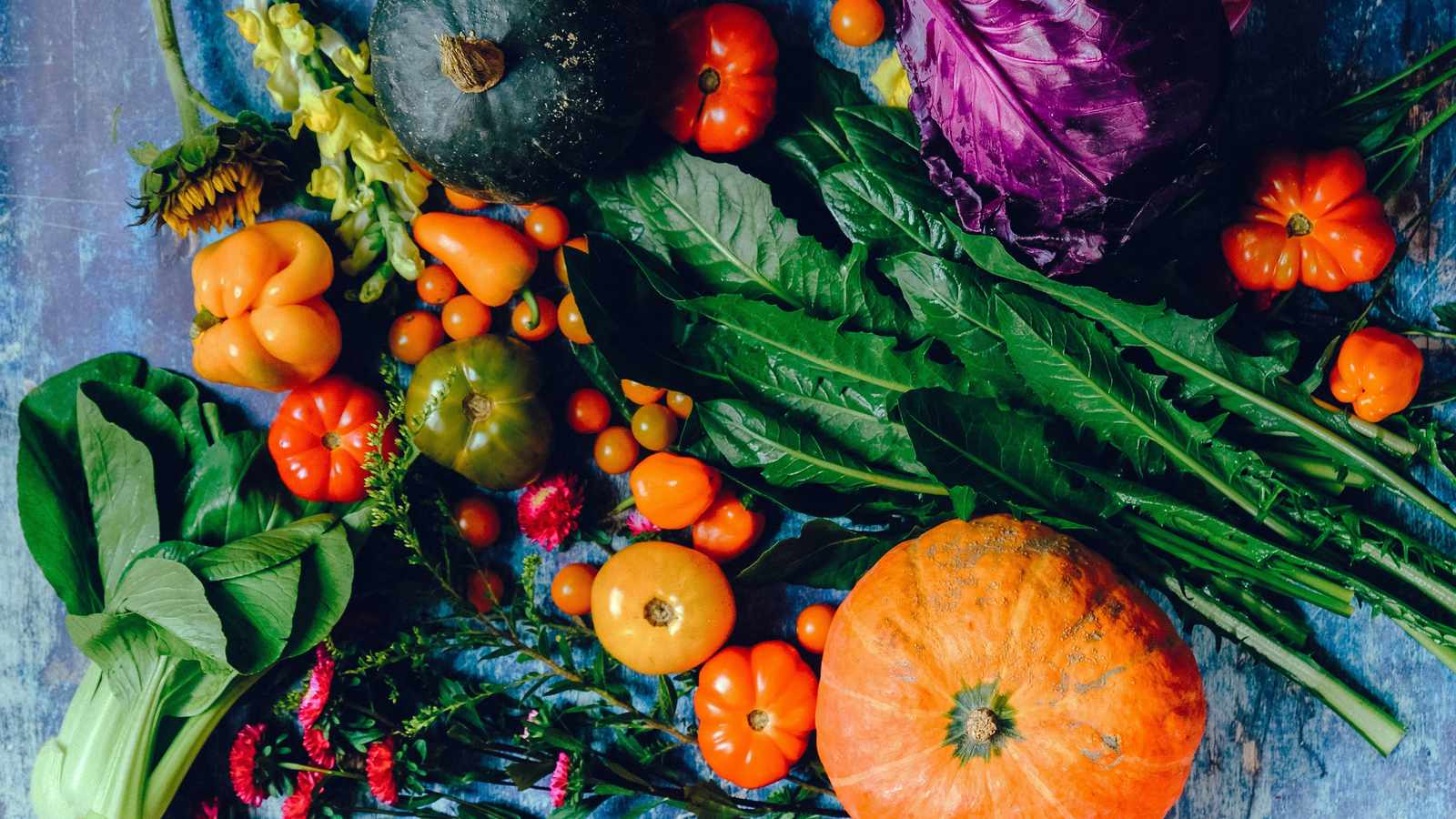 Growing a Vegetable Garden Might Be Just What You Need During the Coronavirus Crisis