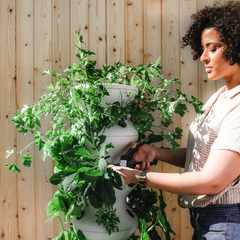 Taking up gardening? Try these 3 helpful tips