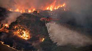 Western Cape government offers to assist Australian wildfire crisis