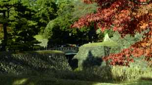 Japan's iconic Imperial Palace gardens reopen