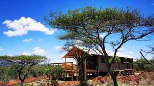 AfriCamps opens new tented camp in Pongola Game Reserve