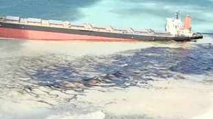 Locals angry over government's inaction over Mauritius oil spill calamity