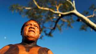 Brazil indigenous leader Aritana dies after contracting Covid-19